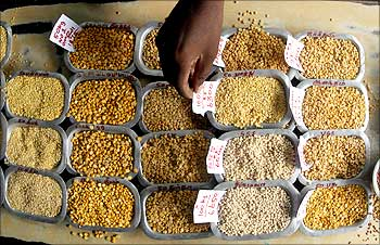 Image: A man arranges price tags on the samples of various pulses at a wholesale market in Chennai. Photographs: Babu Babu/Reuters