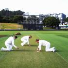 'The wicket at Basin Reserve looks like it might do a bit'