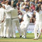 1st Test, Day 1 PHOTOS: Australia dismiss New Zealand for 183
