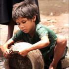Child labour: Huge burden on tiny hands