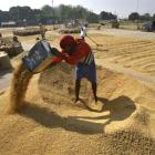 Major problems with the Food security Bill