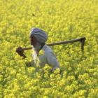 NDA ally Akali Dal opposes land bill