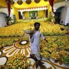 Gujarat's mango farmers to emulate Amul model