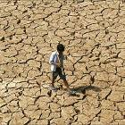 IMD or Skymet: Who will get El Nino's impact on monsoon right?