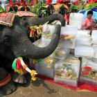 Can Indian elephant take on Chinese dragon? Not in next 20 yrs