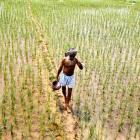 Narendra Modi backtracks on pro-business land bill