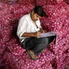 'Traders may have pocketed Rs 8,000 cr during onion crisis'