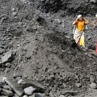Coal India share sale: How should a retail investor apply?