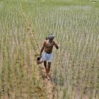 India to issue land reform order to get around political deadlock