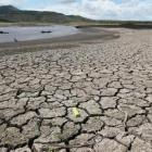 Govt closely monitoring water crisis in drought-hit areas