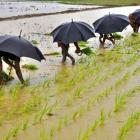 Monsoon to end late, benefit farmers