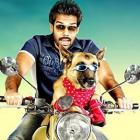 Review: Naaigal Jaakirathai is a dog's show all the way