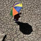 Heat wave intensifies in AP, toll rises to 150