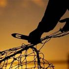 Lankan navy arrests 7 Tamil Nadu fishermen