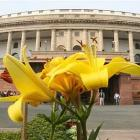 MHA to suggest enhanced security for Parl complex over Mann video row