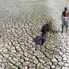 'Why is Sharad Pawar mum on nephew Ajit's drought remark?'