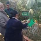 Modi plants Banyan tree sapling at SAARC retreat resort