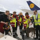 Sniffer dogs from India, France assisting in rescue ops in Nepal