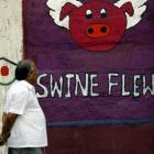 Swine flu claims 20 more lives, toll rises to 2,064