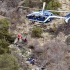 Germanwings crash: 'Co-pilot deliberately forced plane into descent'