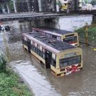 176 dead in Tamil Nadu, rains continue to pour