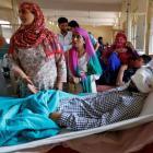Alternatives to pellet guns in few days: Rajnath