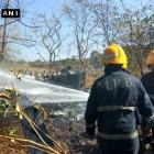 Pilot, woman killed after chopper crashes in Mumbai
