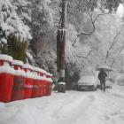 PHOTOS: Shimla turns snow white!