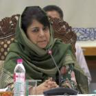 If forces knew it's Burhan, they would've given him a chance: Mehbooba