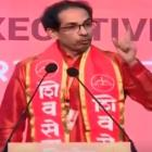 Sena not to ally with BJP, to go solo in 2019 polls