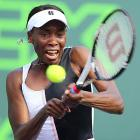 Venus to make Hopman Cup debut with Isner