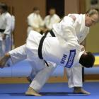 Did Putin play a role in getting Russian judo team approval for Rio Games?