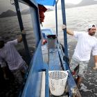 Why this US sailor is cleaning Rio's bay before Olympics