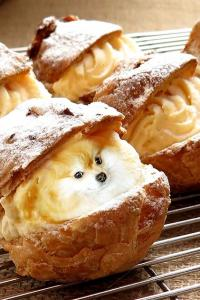 Instagram's latest obsession: Cute pooches in delicious dishes