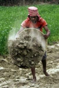 Will MGNREGA end up subsidising private farm labour?