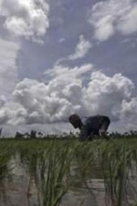 El Nino likely to impact monsoon this year