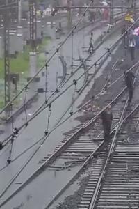 Heavy rains cripple life in Mumbai; disrupt rail, road traffic