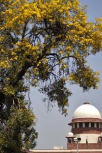 SC Collegium names 13 advocates for elevation as Allahabad HC judges