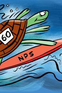 Opt for NPS for higher returns