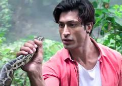 Junglee Review: Gimmicky affair