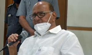 Yet to see what light CBI shed on Sushant case: Pawar