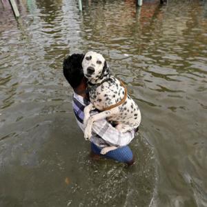 Disaster risks grow, as India's cities flounder