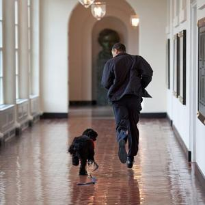 PHOTO ALBUM: Obama's years in the White House