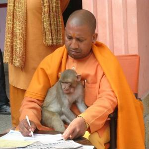 Is Yogi scared of the Mughals?