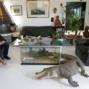 The Frenchman who shares his home with 400 reptiles