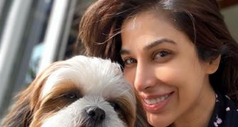 PIX: Sophie Choudry and adorable Tia