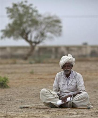 A farmer waits to receive the fodder being distributed by the government for cattle at Sami village in Gujarat.