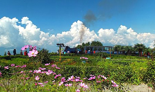 Darjeeling Himalayan Railway.