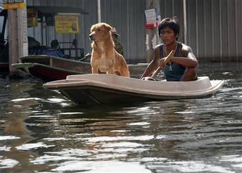 A man and his dog travel on a boat through a flooded street in Nonthaburi province, on the outskirts of Bangkok.