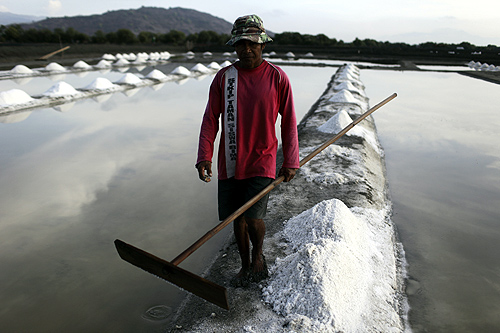 A worker walks at a salt field at Palibelo village, on the outskirts of Bima, on Indonesia's Sumbawa island.